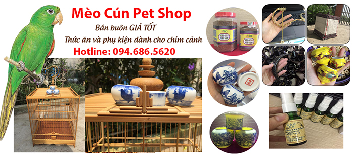 ban-buon-do-cho-cho-meo-meo-cun-pet-shop-2a
