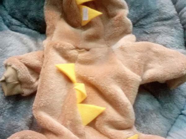 Quần áo cho chó bộ khủng long đẹp đủ size Mèo Cún Pet Shop
