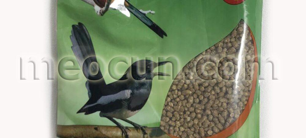 cám chim chích chòe - thức ăn cho chim meocun.com