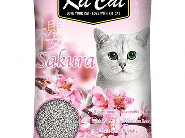 Cát vệ sinh cho mèo kit cát vón