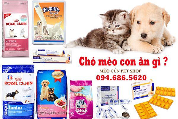 Chó mèo con ăn gì - thức ăn chó mèo giá rẻ Hà Nội