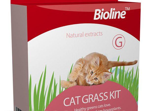 Cỏ mèo Bioline - thức ăn cho mèo