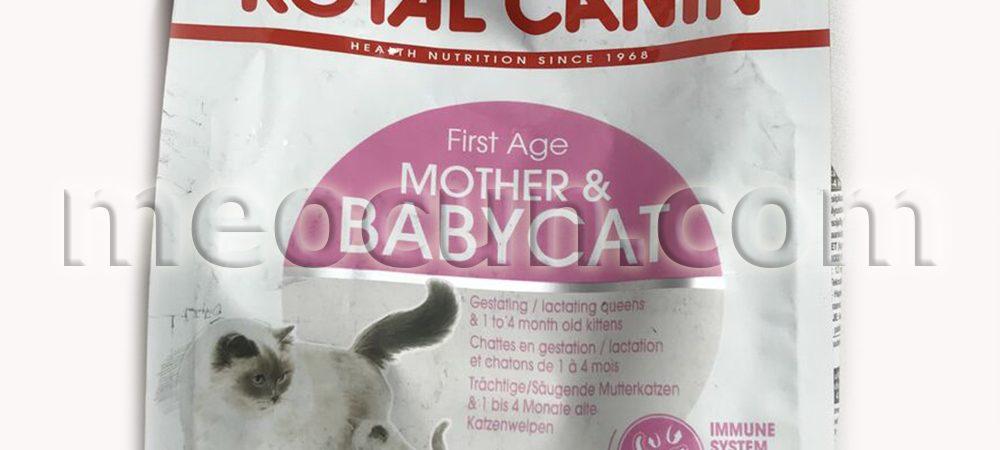 hạt royal canin babycat cho mèo - thức ăn cho mèo meocun.com