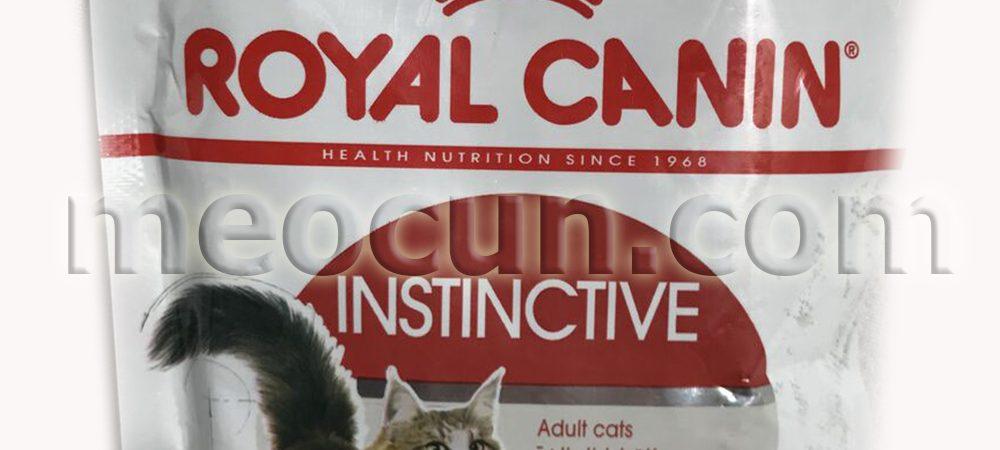 pa te royal canin adult - thức ăn cho meo meocun.com