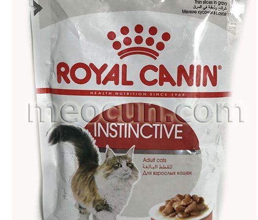 pate royal canin adlut - thức ăn cho meo meocun.com