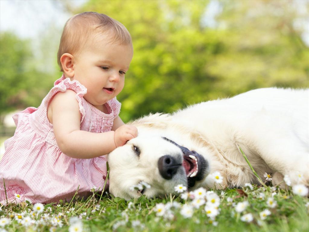 lợi ích khi nuôi thú cưng với bé - chăm sóc thú cưng meocun.com