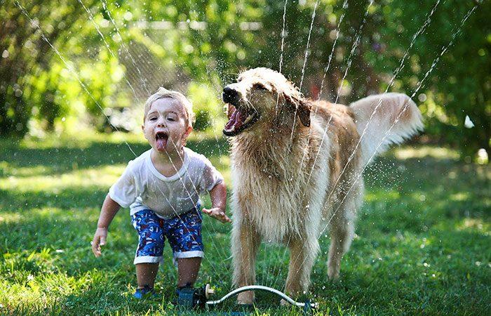 Lợi ích khi nuôi thú cưng với bé yêu - chăm sóc thú cưng meocun.com