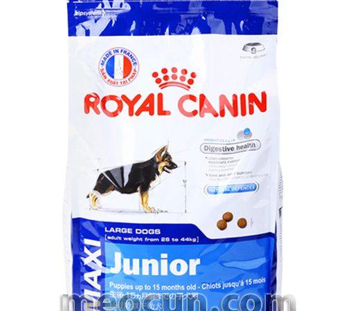 Thức ăn cho chó con giống lớn - thức ăn chó con Royal Canin Maxi Junio