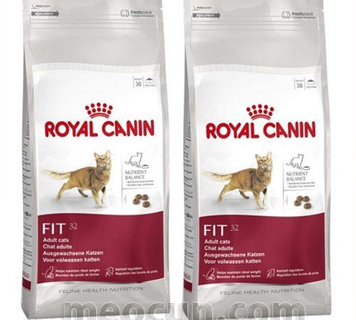 Thức ăn cho mèo trên 12 tháng Royal Canin FIT32 - meocun.com